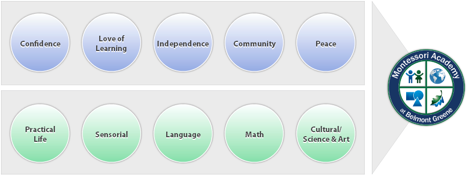 Education Model